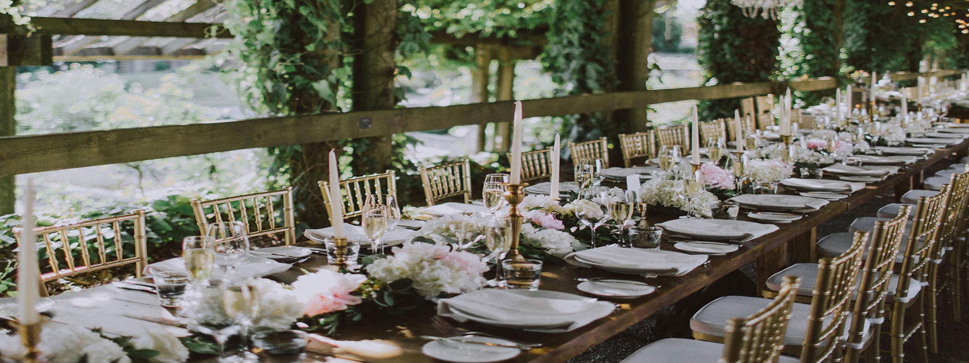 Find your perfect Wedding Vendor